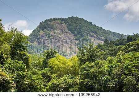 View of a hill near Thattekkad Bird Sanctuary near Kochi, Kerala, India
