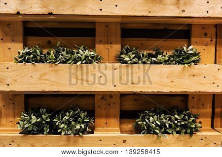 Plant Pots On Wooden Container