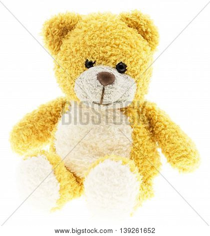 Merry fur toy bear isolated on white background