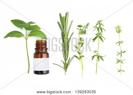 Dropper bottle and herbs isolated on white