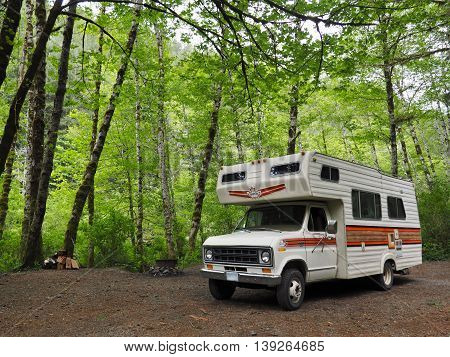 Recreational Vehicle Camping in Lush Green Forest