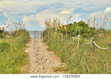 One of the many public beach accesses to Edisto Beach in South Carolina.
