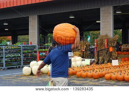 man carrying big pumpkin in farmer's market
