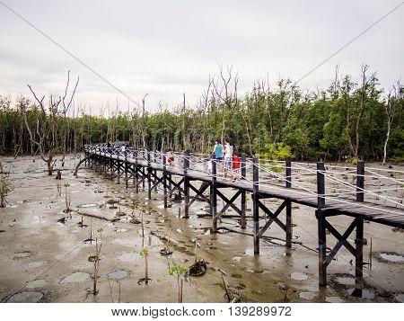 family walk on wooden Bridge across the mangrove forest
