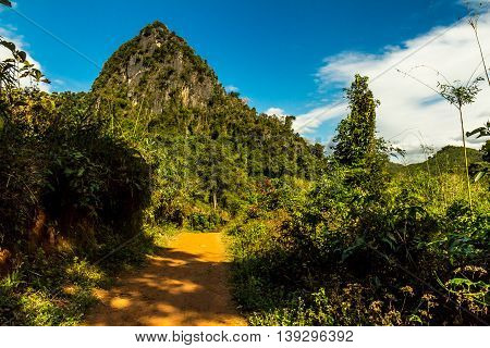 A dirt road through green foliage and a weird cliff in the countryside of Laos