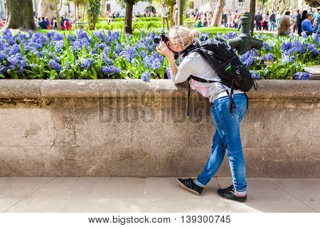 female traveler pictures of Topkapi Palace in Istanbul on a background of lilac flowers. Travel Turkey. The main palace of the Ottoman Empire is located on a promontory Sarayburnu.