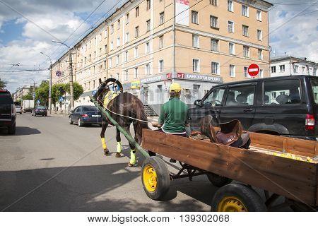 Horse On The Street Oktyabrskiy Prospect In Kirov City