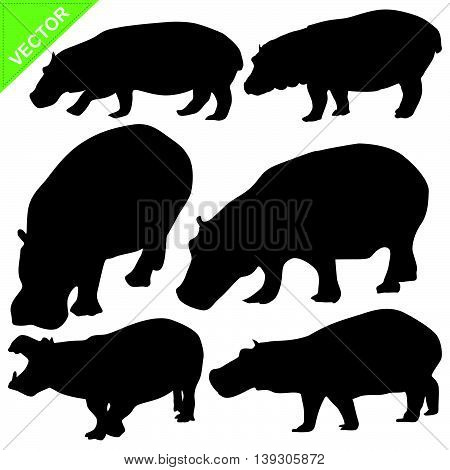 Hippopotamus silhouettes vector collections on white color background