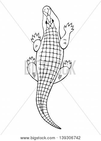 Crocodile animal graphic black white isolated illustration vector