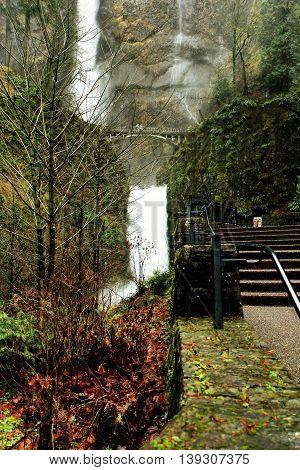 Multnomah Falls in the Columbia River Gorge, Oregon, USA.