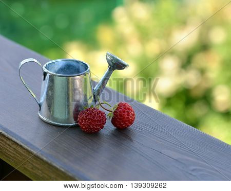 Small watering can with ripe strawberry on wooden planks. Summer seasonal background, garden or rural countryside still life, vintage or retro concept