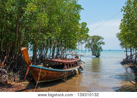 The Roots Of The Trees And The Boat. Peninsula Of Railay. Krabi, Thailand.