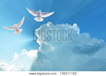 White doves in blue sky symbol of faith