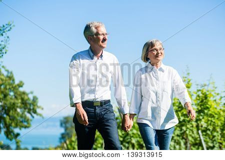 Senior woman and man having walk in summer