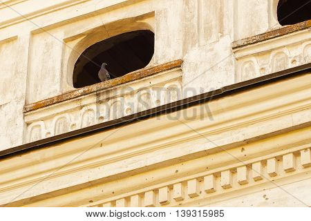 Small window in old ruined abandoned building and pigeon sitting there