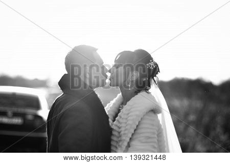 Kissing wedding couple on the backlight at wedding