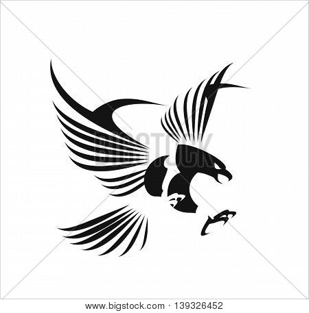 Flying Eagle spread out its feather. black eagle on white background.