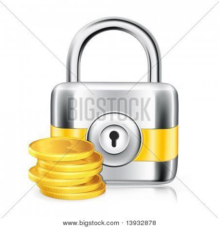Lock and money, vector icon