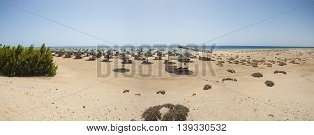 Landscape panoramic view of a sandy beach with sunbeds at tropical luxury hotel resort