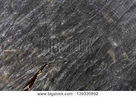 Dark gray or black wood texture closeup. Wooden background. Hardwood surface circle, wooden disc cut out