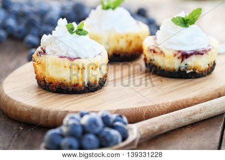 Mini blueberry cheesecakes with whipped cream surrounded by fresh berries. Extreme shallow depth of field with selective focus on dessert in front of image.