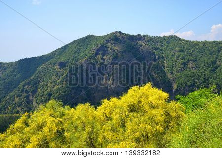 Mount Somma is the remnant of a large volcano, out of which the peak cone of Mount Vesuvius has grown. Province of Naples, in the Campania region, Italy.