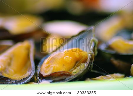 Steamed mussels on the plate. Сooked mussels on a table close-up