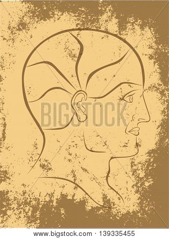 Vector Phrenolgy Head Sepia Outline On Grunge Background with 5 Brain Sectors