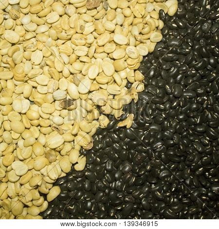 The Coffee beans and black beans on background texture