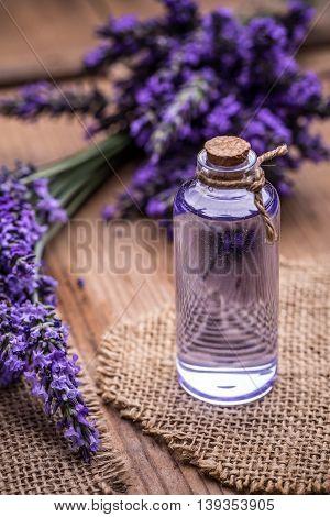 Essential oil and fresh lavender flowers, studio shot