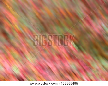 Multicolored red pink orange green yellow defocused natural and abstract background