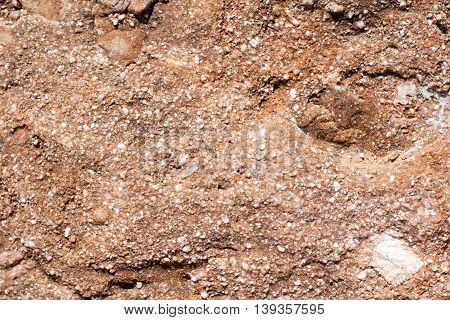 Marine colorful and rugged rock background, close up