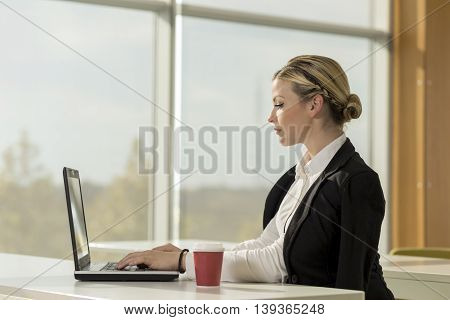 Young business woman sitting at her desk in an office working on a laptop computer and planning a new project