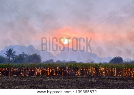 Blurred Sugar cane burning, dust pollution , Air pollution