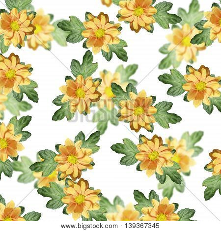 Beautiful floral background with isolated yellow chrysanthemum