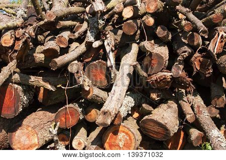 Firewood background. Chopped firewood on a stack. Preparation of firewood for the winter. Firewood for the furnace. Renewable resource of a energy. Environmental concept.