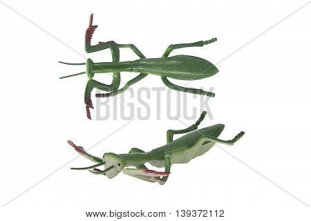Isolated mantis toy profile and angle view photo.