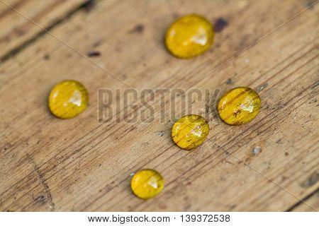 Small Honey Drops
