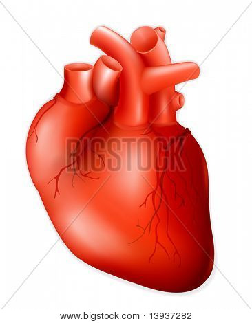 Corazón humano, eps10