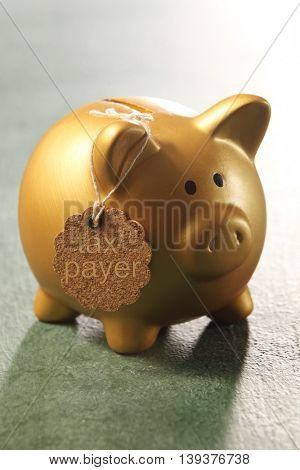 golden piggy bank with tag-tax payer