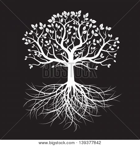 Vector Illustration. White Tree and Roots. Nature.