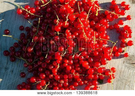 Heap of red currents on wooden bench