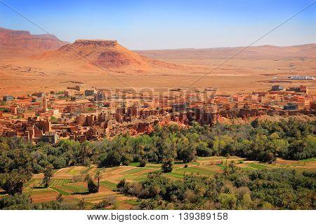 Moroccan Village Oasis