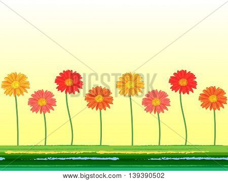 Horizontal seamless background with colorful gerbera flowers. Vector illustration