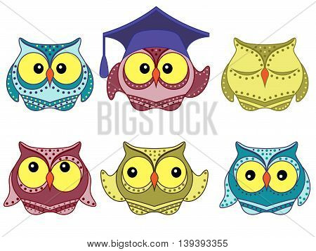 Set of six amusing colorful vector owls isolated on the white background