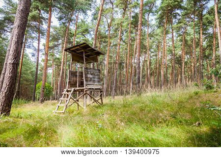 a german deerstand stands in a forest
