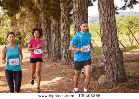 Three Runners In A Cross Country