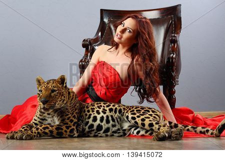 Leopard and posing beautiful woman in red dress near chair in studio