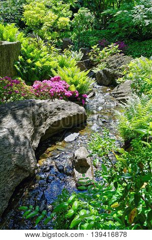 Scenic view of a beautiful creek in the springtime