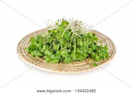 fresh radish sprouts or Kaiware Daikon on bamboo mat sket with white background